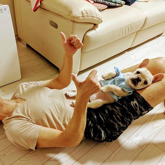 大福ちゃんのおかーさんから嬉しいお便りが届きました😊|シオから巣立った子犬写真館