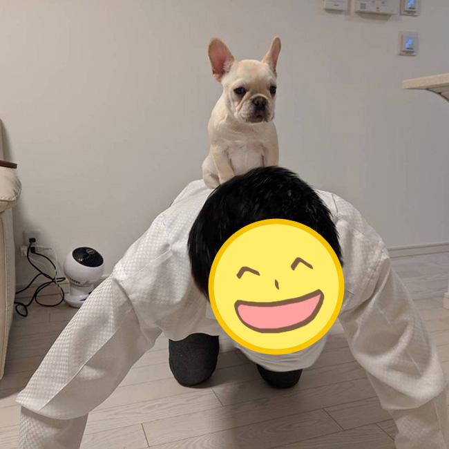 大福ちゃんのおかーさんから嬉しいお便りが届きました😊 シオから巣立った子犬写真館