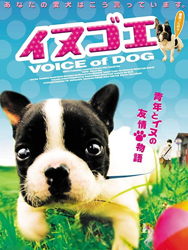 おうち時間に!「フレンチブルドッグの登場する映画」を見て愛犬とステイホーム お役立ち記事 雑学