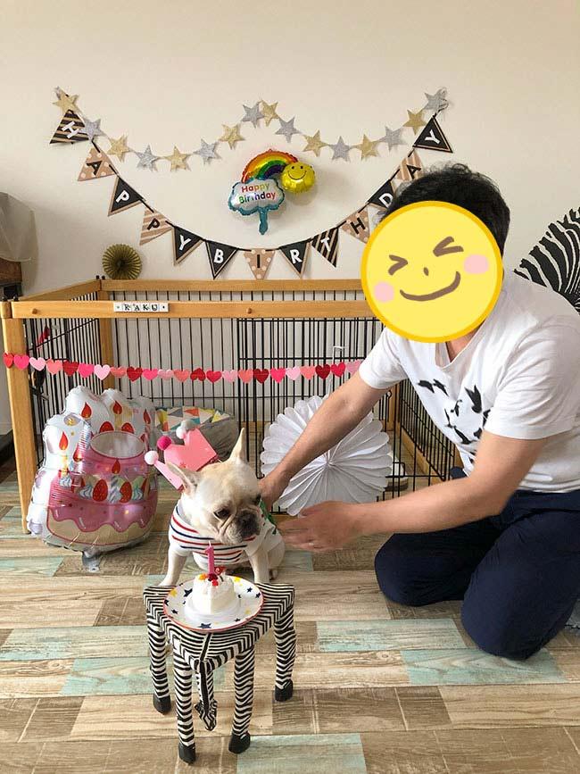 HAPPY BIRTHDAY🎂楽久ちゃん🎉 シオから巣立った子犬写真館