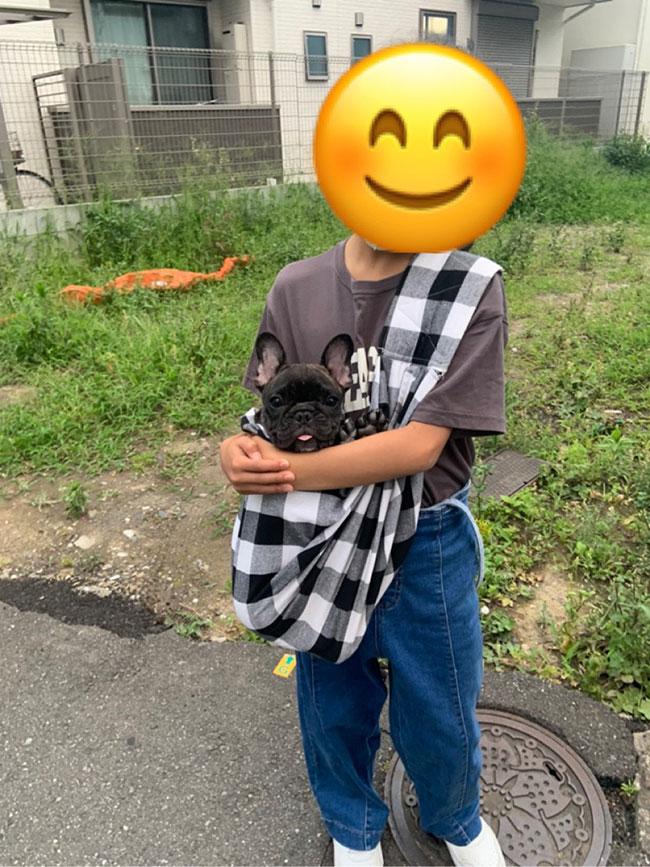 くりちゃんのご家族さんからお便り届きました😊 シオから巣立った子犬写真館