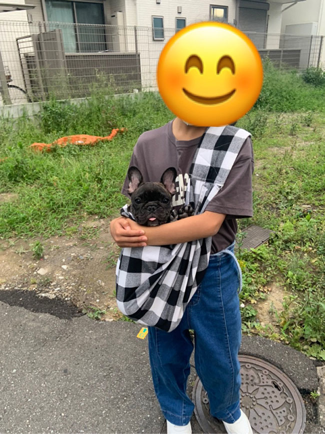 くりちゃんのご家族さんからお便り届きました😊|シオから巣立った子犬写真館
